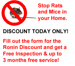 Stop Rats and Mice in your Los Angeles home today!